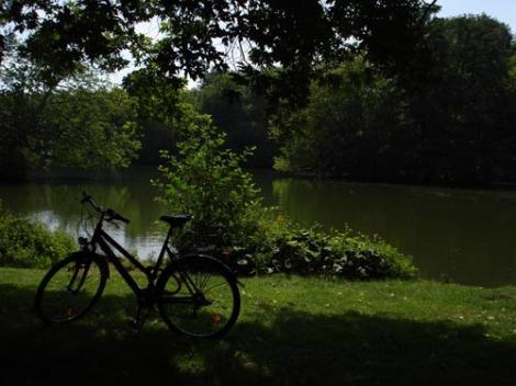 berlin_park.jpg